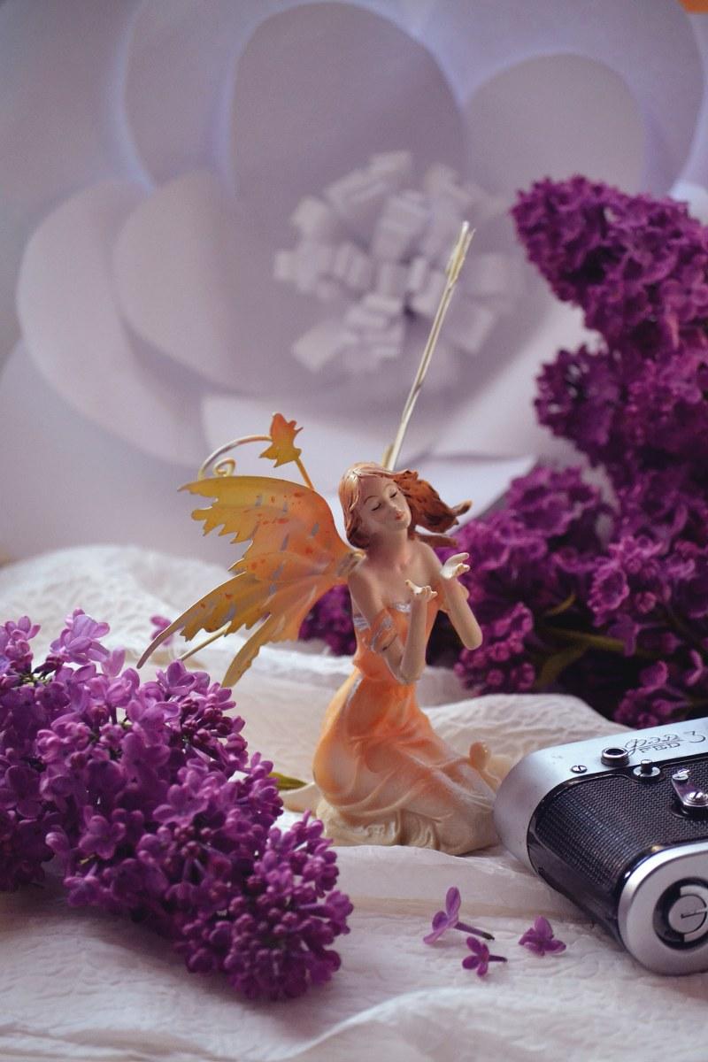 Spring fairz
