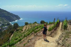 Cinque Terre Trail